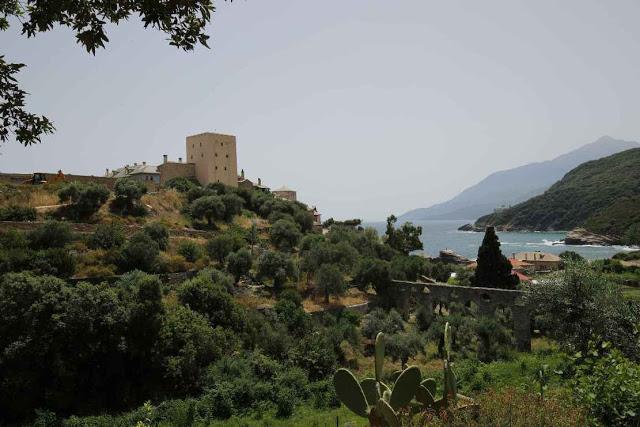 12049 - Η διαδρομή Βατοπαίδι - Παντοκράτορος από το μονοπάτι (φωτογραφίες) - Φωτογραφία 33