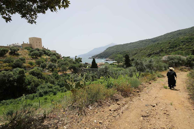 12049 - Η διαδρομή Βατοπαίδι - Παντοκράτορος από το μονοπάτι (φωτογραφίες) - Φωτογραφία 34