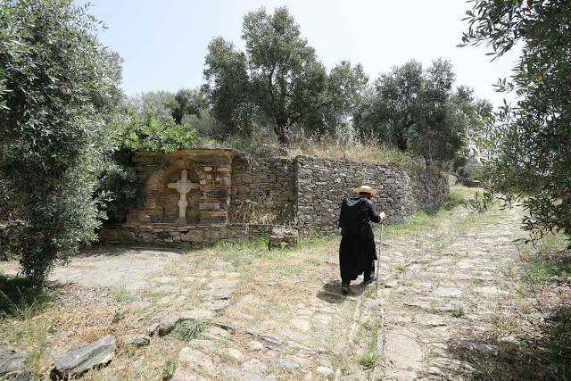 12049 - Η διαδρομή Βατοπαίδι - Παντοκράτορος από το μονοπάτι (φωτογραφίες) - Φωτογραφία 42