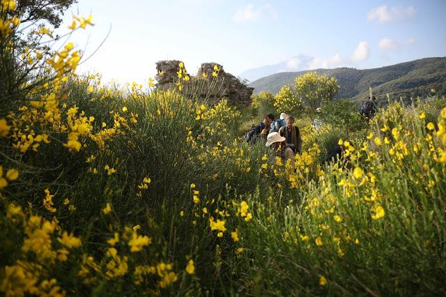 12133 - Ο πύργος της μονής του Καλέτζη (Κολιτσού). Θρύλος, ιστορία, φωτογραφίες - Φωτογραφία 59