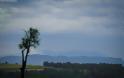 Μια βόλτα από τον Βατόλακκο έως την Κοκκινιά Γρεβενών.. (Φωτογραφίες) - Φωτογραφία 7