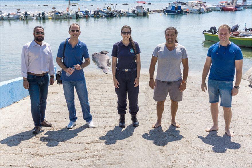 Ρόδος: Βρήκαν νεκρό καρχαρία 4 μέτρων και 436 κιλών! - Φωτογραφία 3