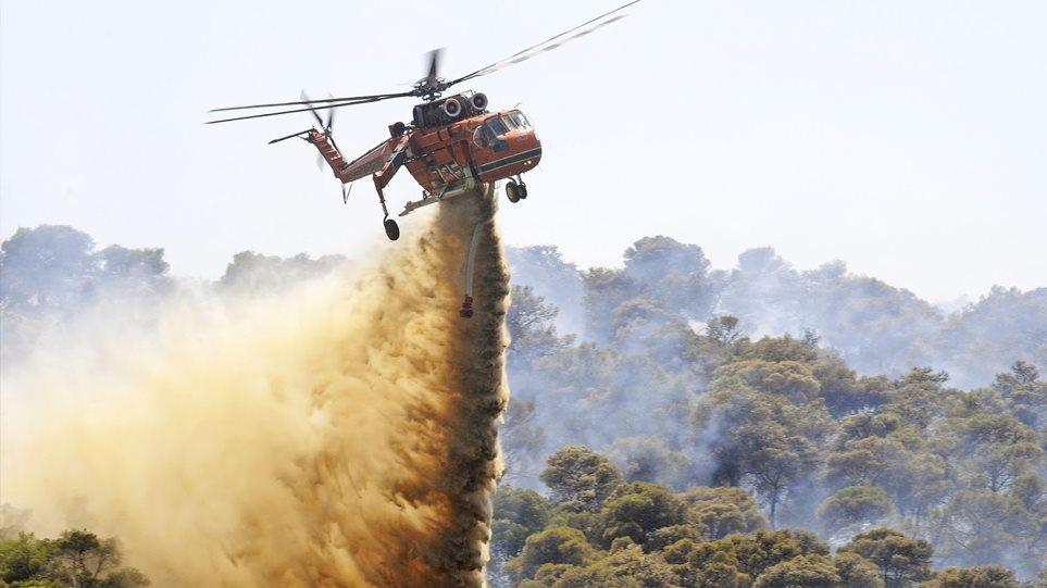 Υπό έλεγχο η φωτιά στο Λαγονήσι - Προσήχθη ένα άτομο - Φωτογραφία 1