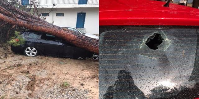 Καταστροφές στο ΚΑΑΥ Νέας Μάκρης από το φονικό μπουρίνι - Φωτογραφία 1