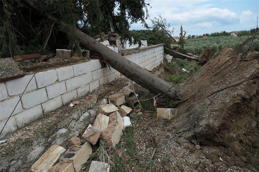 Χαλκιδική: Οι εικόνες - σοκ της καταστροφής - Φωτογραφία 12