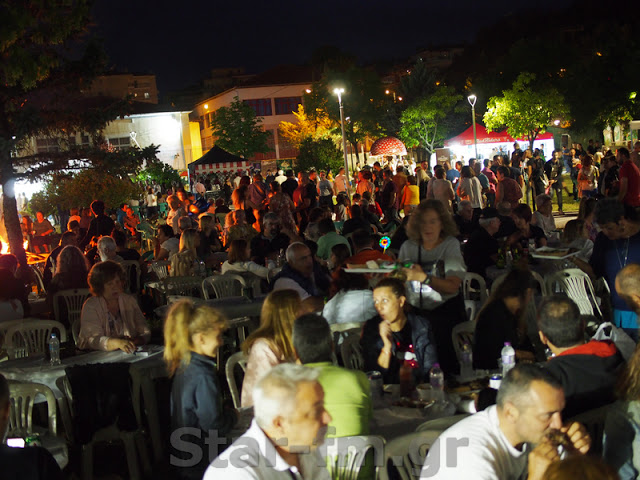 16η Πανελλήνια Γιορτή Μανιταριού στα Γρεβενά - Πέμπτη 11 Ιουλίου 2019 (εικόνες + video) - Φωτογραφία 146
