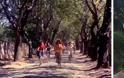 Πώς είναι σήμερα μέρη που γυρίστηκαν ελληνικές ταινίες - Φωτογραφία 8