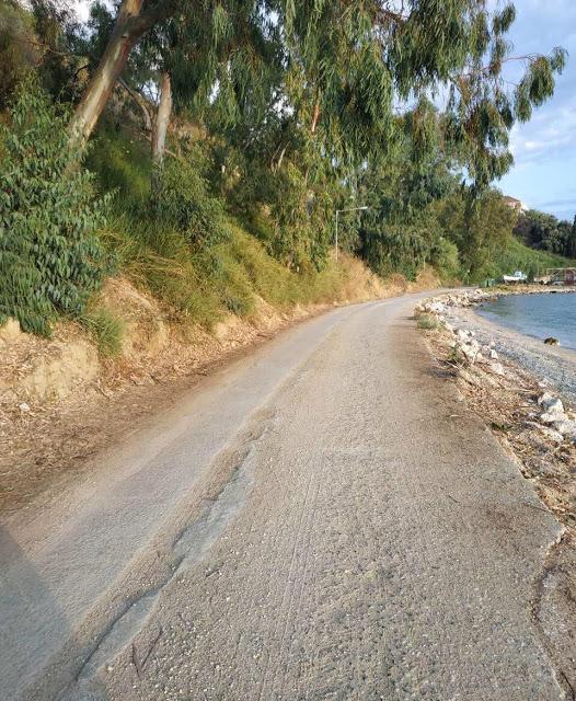 Καταγγελία ΠΑΛΑΙΡΟΣ: Απαράδεκτη η κατάσταση στον παραλιακό δρόμο Ποταμάκι -Λιμάνι Παλαίρου - Φωτογραφία 13