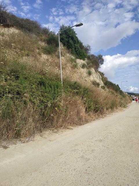 Καταγγελία ΠΑΛΑΙΡΟΣ: Απαράδεκτη η κατάσταση στον παραλιακό δρόμο Ποταμάκι -Λιμάνι Παλαίρου - Φωτογραφία 28