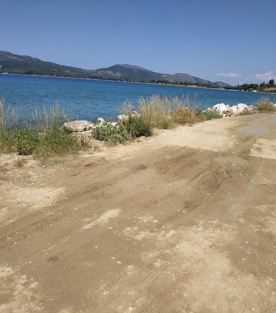 Καταγγελία ΠΑΛΑΙΡΟΣ: Απαράδεκτη η κατάσταση στον παραλιακό δρόμο Ποταμάκι -Λιμάνι Παλαίρου - Φωτογραφία 4