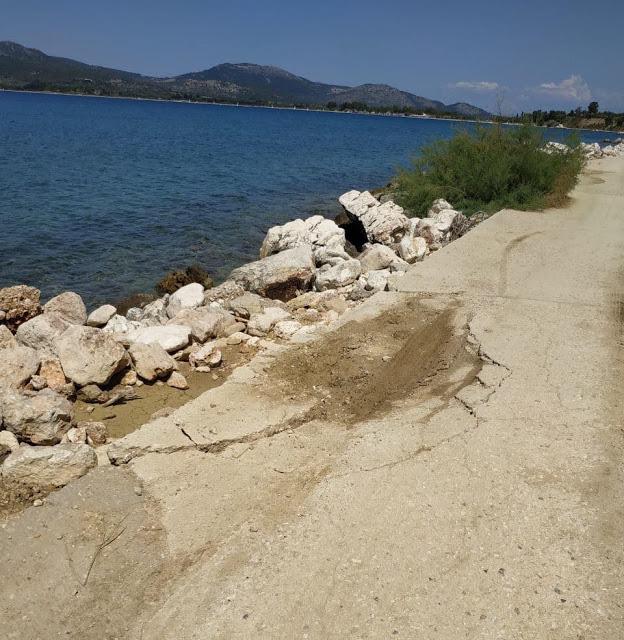 Καταγγελία ΠΑΛΑΙΡΟΣ: Απαράδεκτη η κατάσταση στον παραλιακό δρόμο Ποταμάκι -Λιμάνι Παλαίρου - Φωτογραφία 8