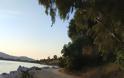 Καταγγελία ΠΑΛΑΙΡΟΣ: Απαράδεκτη η κατάσταση στον παραλιακό δρόμο Ποταμάκι -Λιμάνι Παλαίρου - Φωτογραφία 25