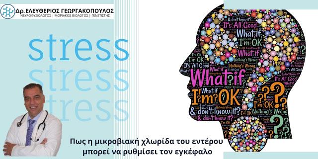 Dr. Ελευθέριος Γεωργακόπουλος: Το υγιές έντερο «κλειδί» για την καταπολέμηση του άγχους και τη σωστή λειτουργία του εγκεφάλου - Φωτογραφία 1