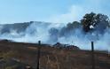 Περίπου 50 στρέμματα κάηκαν κοντά στην Παλαιομάνινα – Ελέγχεται η φωτιά