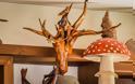 Μανιταροταβέρνα Αυλαίς Γρεβενά: Ενα ζωντανό μουσείο στην καρδιά της πόλης! (Φωτογραφίες) - Φωτογραφία 14
