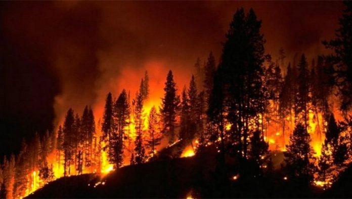 Υπό έλεγχο η φωτιά στον παλιό ΧΥΤΑ στο Γεννάδι - Φωτογραφία 1