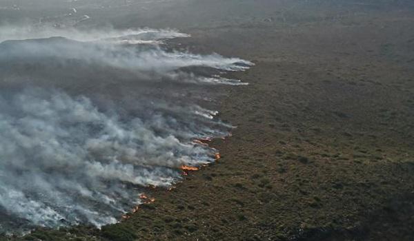 Ορμητικά προς τη θάλασσα κινείται η φωτιά στον Πρόδρομο Βοιωτίας - Πιθανή η εκκένωση παραλιών - Φωτογραφία 1