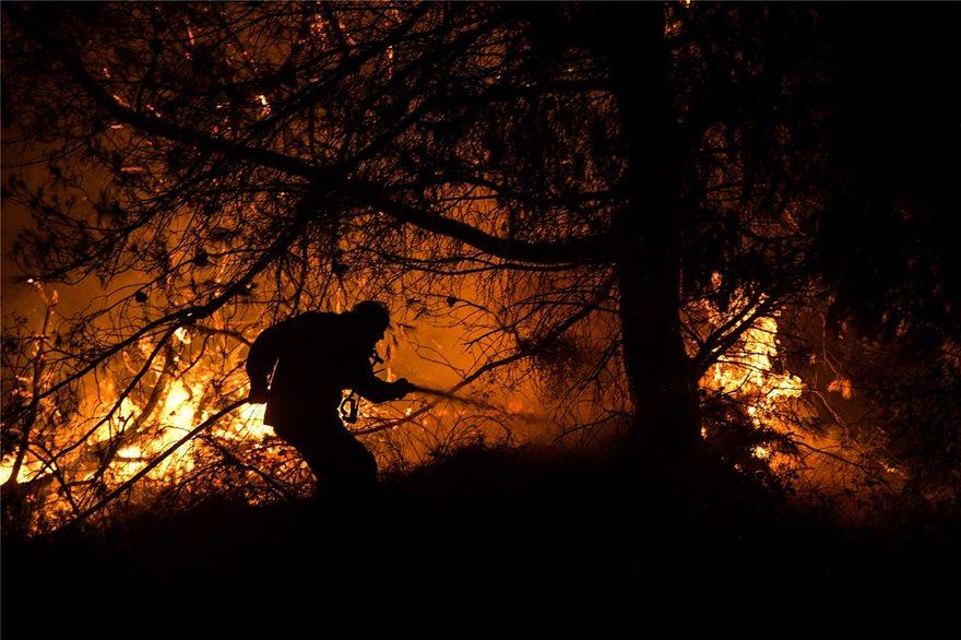 Άγρια νύχτα στην Εύβοια: Σε πύρινο κλοιό τα Ψαχνά και τέσσερα χωριά - Φωτογραφία 2