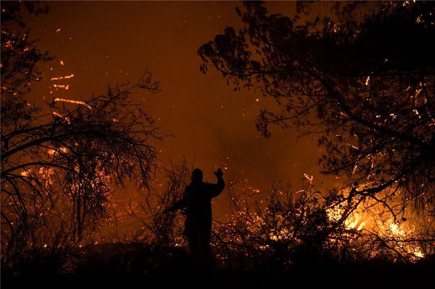 Εκτός ελέγχου η φωτιά στην Εύβοια - Εκκενώθηκαν τέσσερα χωριά - Φωτογραφία 3