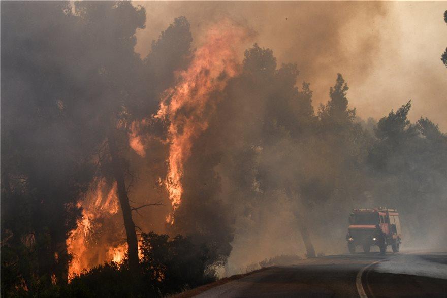 Εκτός ελέγχου η φωτιά στην Εύβοια - Εκκενώθηκαν τέσσερα χωριά - Φωτογραφία 4