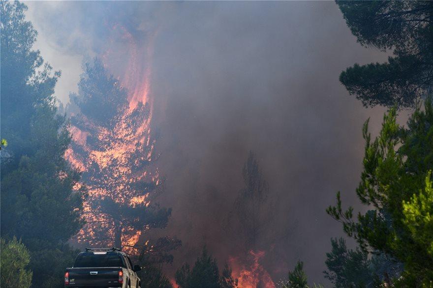 Εκτός ελέγχου η φωτιά στην Εύβοια - Εκκενώθηκαν τέσσερα χωριά - Φωτογραφία 5