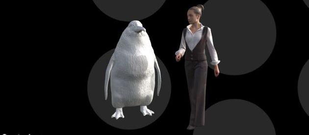 Ανακαλύφθηκε νέο είδος προϊστορικού πιγκουίνου με μέγεθος... ανθρώπου - Φωτογραφία 2