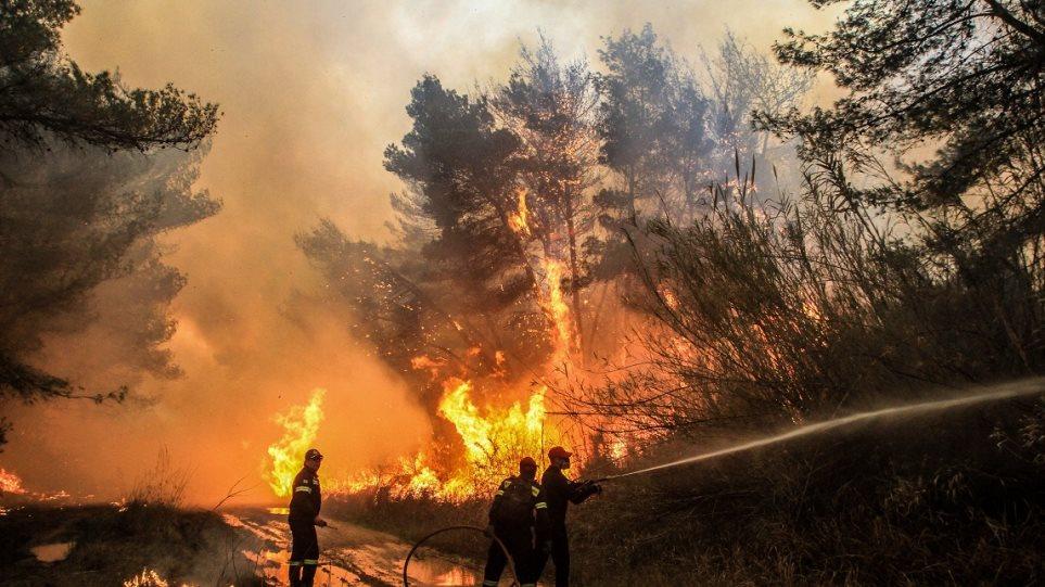 Υπό μερικό έλεγχο η φωτιά στις Ερυθρές Αττικής - Φωτογραφία 1