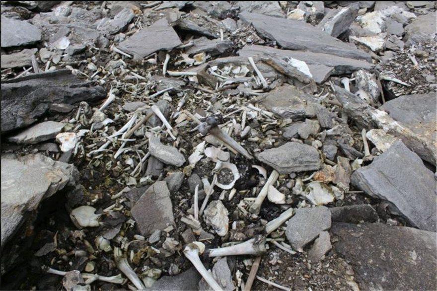 Βρήκαν «Έλληνες» στην Λίμνη των Σκελετών στα Ιμαλάια - Φωτογραφία 3