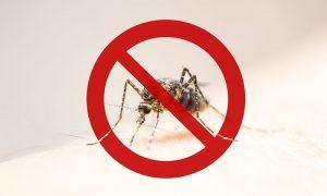 Υπουργείο Υγείας: Έκτακτη σύσκεψη για τα μολυσμένα κουνούπια - Φωτογραφία 3