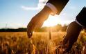 Κ. Μητσοτάκης: Τι εξήγγειλε για τους αγρότες από την 84η ΔΕΘ