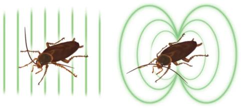 Ποιοι βραβεύθηκαν με τα Νόμπελ της τρελής επιστήμης (Ig Nobel) 2019; - Φωτογραφία 3