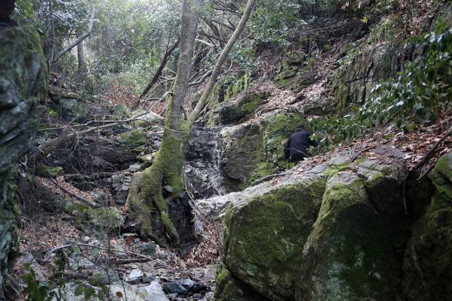 12579 - Αγιορείτικες φυσικές ομορφιές. Φωτογραφικό ταξίδι σε καταρράκτη κοντά στο Βατοπαίδι - Φωτογραφία 13