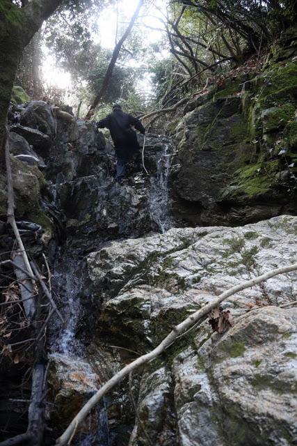 12579 - Αγιορείτικες φυσικές ομορφιές. Φωτογραφικό ταξίδι σε καταρράκτη κοντά στο Βατοπαίδι - Φωτογραφία 14