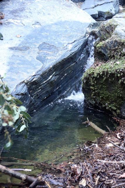 12579 - Αγιορείτικες φυσικές ομορφιές. Φωτογραφικό ταξίδι σε καταρράκτη κοντά στο Βατοπαίδι - Φωτογραφία 24