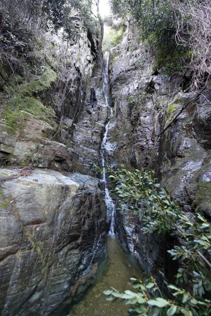 12579 - Αγιορείτικες φυσικές ομορφιές. Φωτογραφικό ταξίδι σε καταρράκτη κοντά στο Βατοπαίδι - Φωτογραφία 3