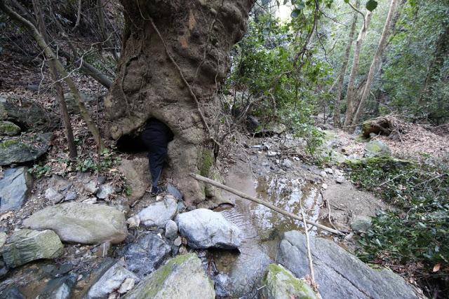 12579 - Αγιορείτικες φυσικές ομορφιές. Φωτογραφικό ταξίδι σε καταρράκτη κοντά στο Βατοπαίδι - Φωτογραφία 39