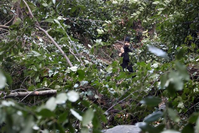 12579 - Αγιορείτικες φυσικές ομορφιές. Φωτογραφικό ταξίδι σε καταρράκτη κοντά στο Βατοπαίδι - Φωτογραφία 48