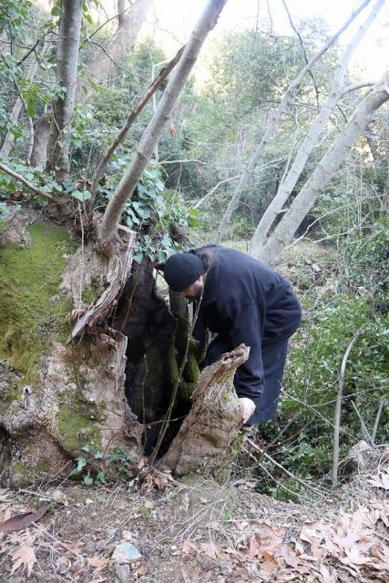 12579 - Αγιορείτικες φυσικές ομορφιές. Φωτογραφικό ταξίδι σε καταρράκτη κοντά στο Βατοπαίδι - Φωτογραφία 5