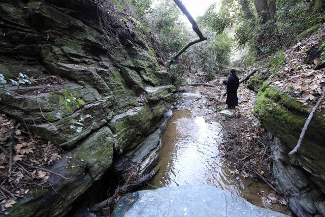 12579 - Αγιορείτικες φυσικές ομορφιές. Φωτογραφικό ταξίδι σε καταρράκτη κοντά στο Βατοπαίδι - Φωτογραφία 57