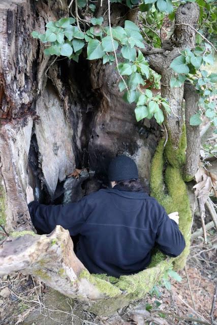 12579 - Αγιορείτικες φυσικές ομορφιές. Φωτογραφικό ταξίδι σε καταρράκτη κοντά στο Βατοπαίδι - Φωτογραφία 6