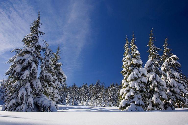 Μερομήνια 2019: Δείτε τι καιρό θα κάνει μέχρι τα Χριστούγεννα – Πότε θα χιονίσει - Φωτογραφία 1