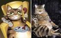 Πώς θα ήταν τα ζώα, αν η εμφάνιση ταίριαζε στον χαρακτήρα τους. - Φωτογραφία 16