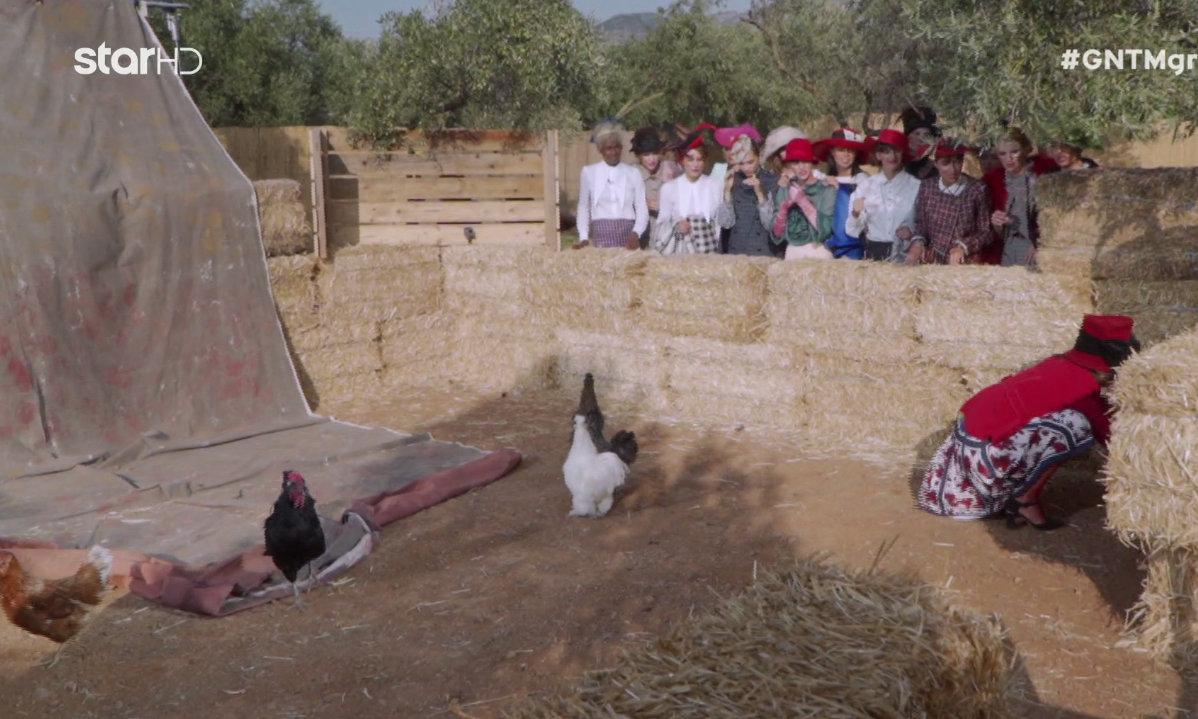 GNTM 2019: Κότες, πάπιες, χήνες και φραγκόκοτες στη δοκιμασία αποχώρησης - Φωτογραφία 1