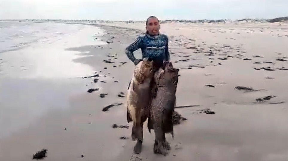 Ο Έλληνας ψαροντουφεκάς με το ρεκόρ τσιπούρας ξαναχτύπησε: Δείτε τι έβγαλε στο Μεξικό - Φωτογραφία 1