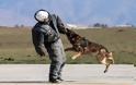 Επίδειξη σκύλων της ομάδας «Κέρβερος» στην 110 Π.Μ. - Φωτογραφία 8