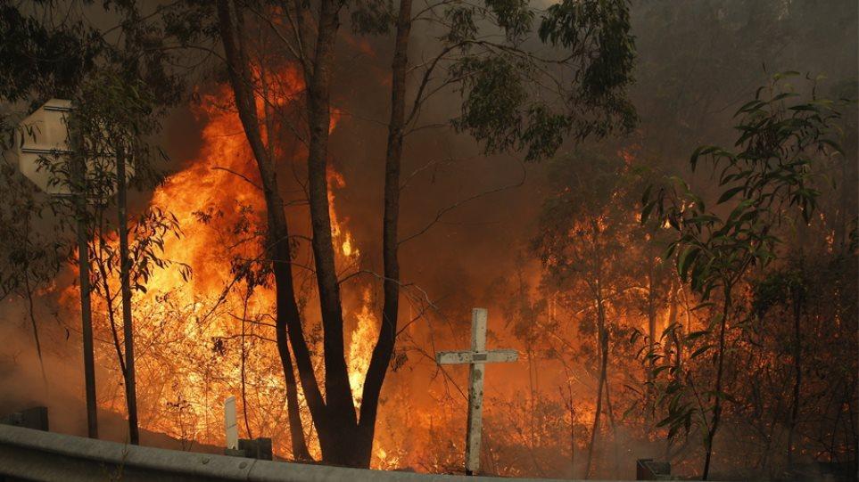 Αυστραλία: Πλησιάζουν στο Σίδνεϊ οι πυρκαγιές - Παγιδευμένοι οι κάτοικοι - Φωτογραφία 1