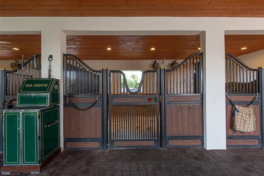 Αθηνά Ωνάση: Χρυσές μπίζνες με άλογα κούρσας - Φωτογραφία 3