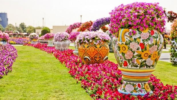 «Miracle Garden» Ο κήπος των θαυμάτων στο Ντουμπάι και δεν υπάρχει παρόμοιος σε όλο τον κόσμο. - Φωτογραφία 12
