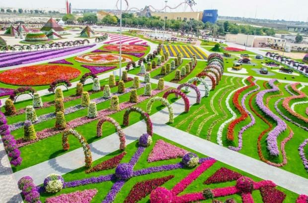 «Miracle Garden» Ο κήπος των θαυμάτων στο Ντουμπάι και δεν υπάρχει παρόμοιος σε όλο τον κόσμο. - Φωτογραφία 13