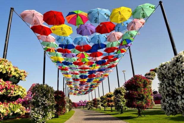 «Miracle Garden» Ο κήπος των θαυμάτων στο Ντουμπάι και δεν υπάρχει παρόμοιος σε όλο τον κόσμο. - Φωτογραφία 17